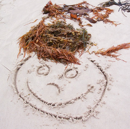 Face drawn in sand with seaweed hair