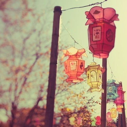 Chinese lanterns (pretty coloured ones) strung between poles amongst winter trees