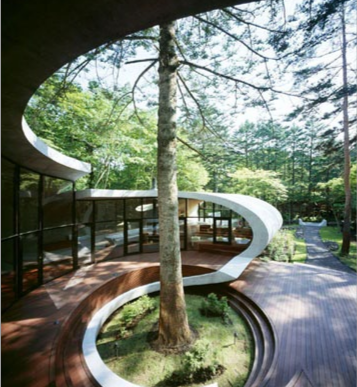 KOTARO IDE — SHELL HOUSE