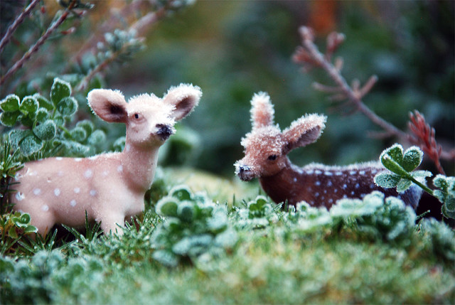 tiny deers in miniature garden covered in frost