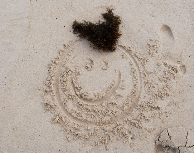 Seaweed head drawn in sand