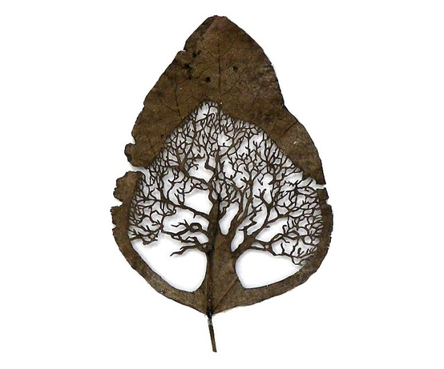 Lorenzo Duran leaf cut art - whole tree design cut into leaf