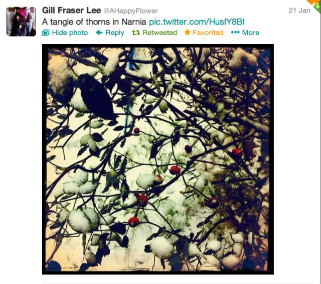 Screen Shot 2013-01-23 at 8.34.59 AM